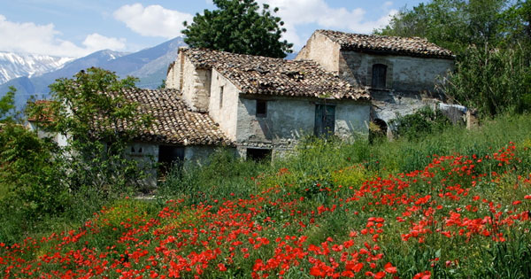 Looking for a house in Italy ? Before relocating and living the Italian dream in your Italy (or Abruzzo) property – learn from our experiences!