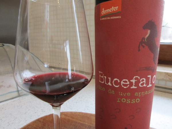 Abruzzo's first ever 'appassito' red wine